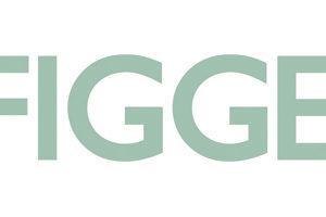 Figge Art Museum logo